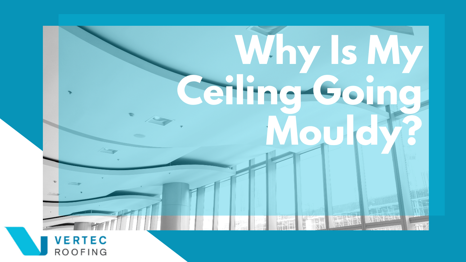 Why Is My Ceiling Going Mouldy?